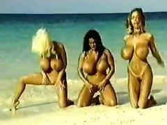 big tits brunette blonde outdoor public bikini ass wet beach ebony hairy retro vintage classic pornstar