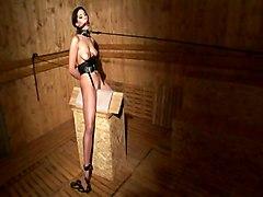 BDSM Male FemaleOther Fetish