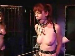 Amateur BDSM Busty Hardcore Matures