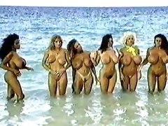 Busty Pornstars Tits