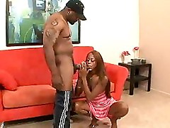 Babes Big Cock Blowjobs Ebony