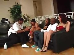 interracial cock riding big cock hardcore blowjob orgy