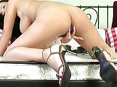 Big Tits Brunettes boobs solo