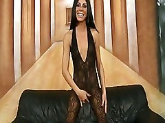 Babes BodyStocking Brunettes