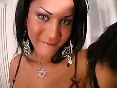 tranny shemale trans transexual tgirl transvestite