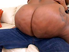 BBW Black and Ebony