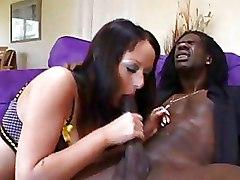 Big Cock Big Tits Interracial