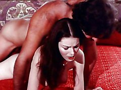 Vintage Blowjob Caucasian Couple Oral Sex Vaginal Sex Vintage