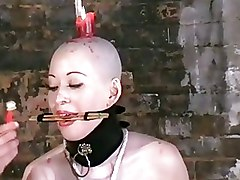BDSM Bizarre Asian Bondage Dungeon Head waxing Kumimonster Waxing asian bdsm extreme oriental slave