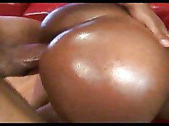 Big Ass Doggy Style Ebony Oiled