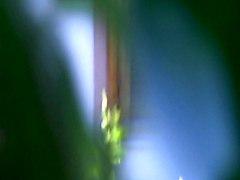 Flashing Hidden Cams Upskirts