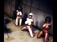 BDSM Art Cartoons Whipping