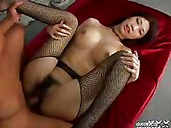 Asian Fishnet Hairy