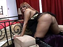 anal cumshot black blowjob ebony asstomouth blackwoman bigass pussyfucking