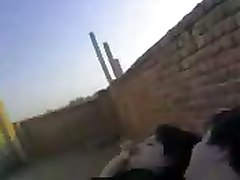 Amateur Anal Arab