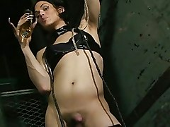 Gorgeous Shemales Shemale kinky tgirl tranny transsexual