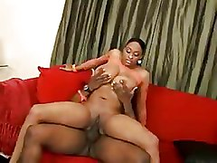 Big Ass Doggy Style Ebony big tits black