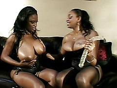 Big Tits Lesbian Anal Ebony Anal Masturbation Big Ass Big Tits Black-haired Ebony High Heels Lesbian Licking Vagina Masturbation Oral Sex Pornstar Shaved Stockings Tattoos Toys Vaginal Masturbation Carmen Carmen Hayes Carmen Jones