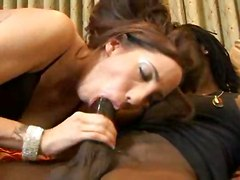 stockings cumshot dildo hardcore interracial blowjob handjob doggystyle threesome pussyfucking strapon