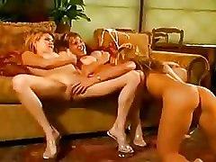 Babes Busty Lesbians