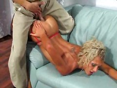 anal  office sex  stockings