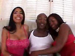 anal cumshot black blowjob bigtits ebony asstomouth blackwoman bigass pussyfucking cumswap cocksuckers