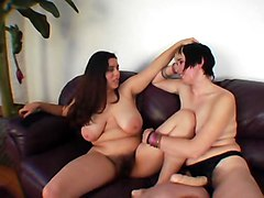Hairy Lesbians Tits