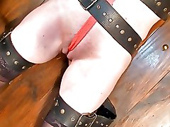 BDSM Bondage Lezdom extreme bondage lesbian domination pain and pleasure tit whipping