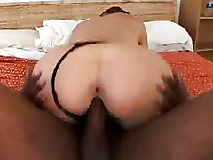 Babes Big Tits Blowjobs Interracial