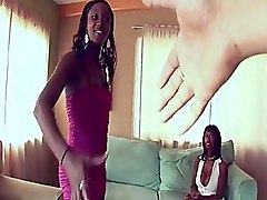 Blowjobs Doggy Style Ebony Group Sex Hardcore