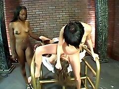 Bukkake Lesbians Squirting