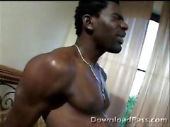 Hot Sexy Black Pussy Pictures Gets Rocked