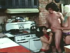 stockings cumshot hardcore blowjob threesome hairypussy pussyfucking classic retro vintage