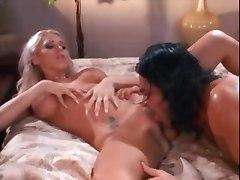 Busty Hardcore Pornstars