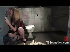 humiliation domination tranny shemale bdsm fetish bondage slave mistress toilet tied transexual transsexual ts tgirl ladyboy transgender transvestite kinky dungeon domme