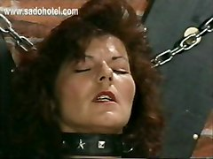 dominatrix mistress latex slave humiliation bdsm pain bondage tied kick femdom horny fetish pussy ass tits