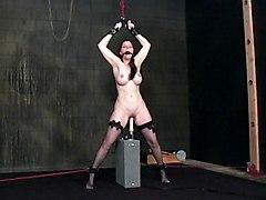 BDSM Pornstars Sex Toys