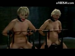 sex lesbian girls boobs ass girl spanking domination bdsm bondage female femdom ho bondaged dominates