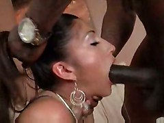 alexis ramirez breeze black dick cock latina oiled bouncing doggy big butt ass booty pigtails suck oral blowjob deepthroat spit handjob couch rabuda riding shaved cum mouth swallow