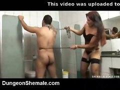 tranny shemale bdsm fetish bondage slave trans mistress transexual ts tgirl dom ladyboy transgender transvestite