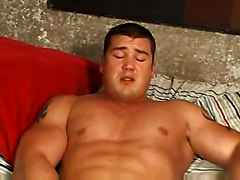 gay bodybuilder muscles muscle muscular m2m gays