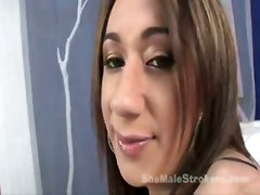 tranny shemale transsexual tgirl travesti