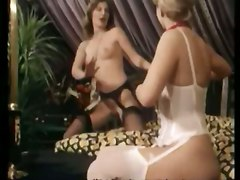 stockings cumshot hardcore blonde blowjob pussylicking lingerie groupsex hairypussy classic retro vintage