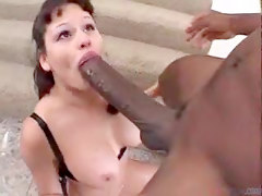Black and Ebony Blowjobs Hardcore