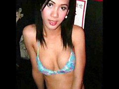 asian compilation trannies photos shemales