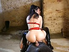 Anal Femdom Pornstars