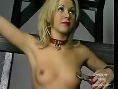 BDSM Blondes Nipples