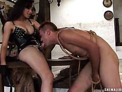 domination bondage bdsm spanking shemale fucks guy brunette
