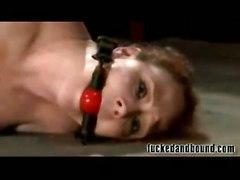 anal hardcore redhead humiliation bdsm fetish bondage slave tied bound whip dom master kink dungeon