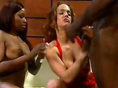 anal cumshot black interracial oiled blowjob redhead threesome deepthroat pussylicking ebony asstomouth blackwoman bigass pussyfucking cocksuckers
